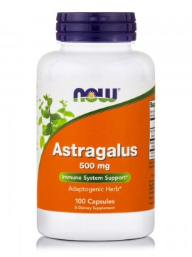 Now Astragalus 500mg 100 κάψουλες