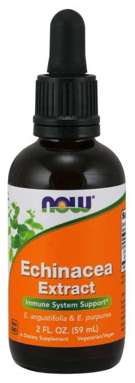 Now Echinacea Extract Liquid 60ml