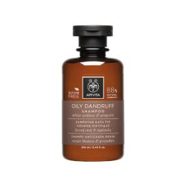 Apivita Holistic Hair Care Σαμπουάν Κατά της Λιπαρής Πιτυρίδας  250ml